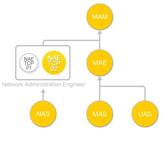 Diagrama de flujo Curso Arquitectura de las Direcciones Internet (NAE-TCP-A02)
