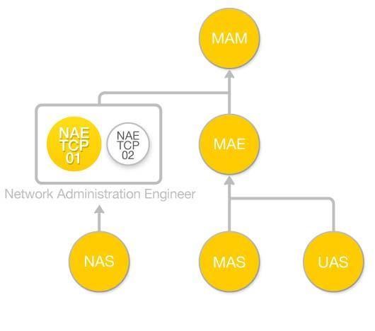 Diagrama de flujo Curso Arquitectura TCP-IP (NAE-TCP-A01)