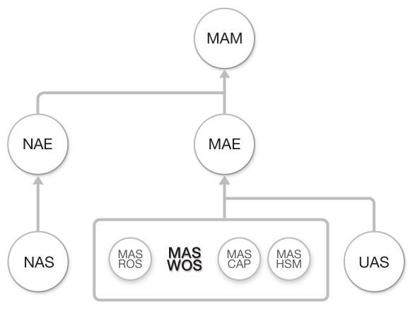 Diagrama de flujo Curso Introduccion a Wireless de MikroTik RouterOS (MAS-WOS) dentro del Flujo total de Cursos de Academy Xperts
