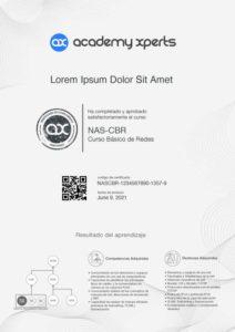 Modelo de Certificado del Curso NAS-CBR