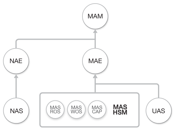 Diagrama de flujo Curso HotSpot con MikroTik RouterOS (MAS-HSM) dentro del Flujo total de Cursos de Academy Xperts